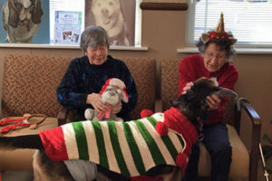 <center>In the News: Senior citizens visit their canine counterparts for Christmas</center>Click to view our  Communities