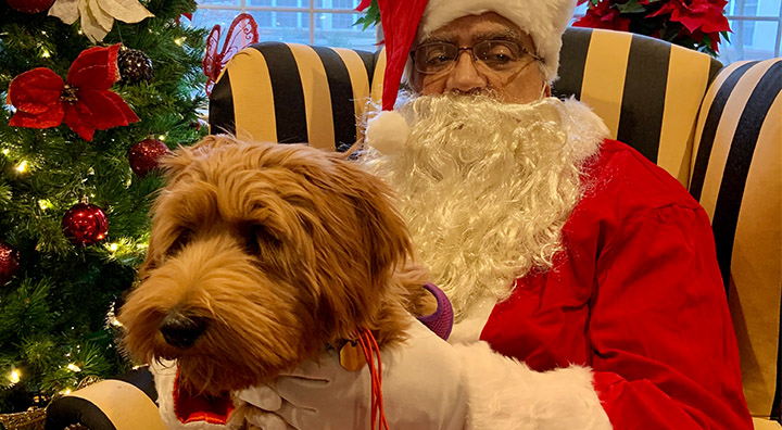 Brown Dog Takes a Photo with Santa at Brandywine Living at Mountain Ridge