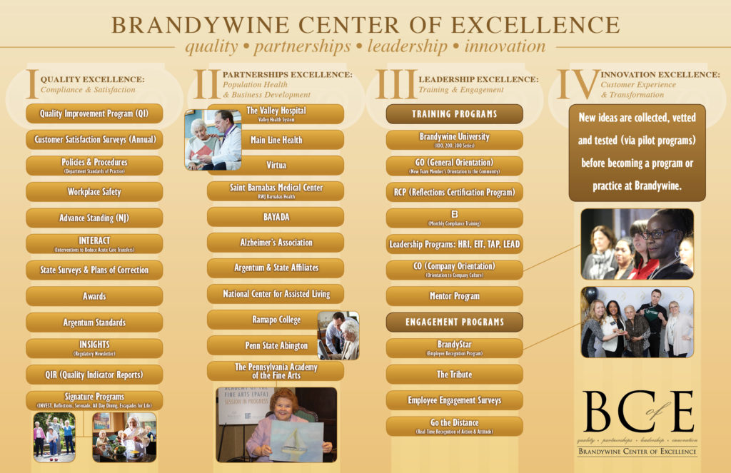 Brandywine Center of Excellence 4 pillars graphic